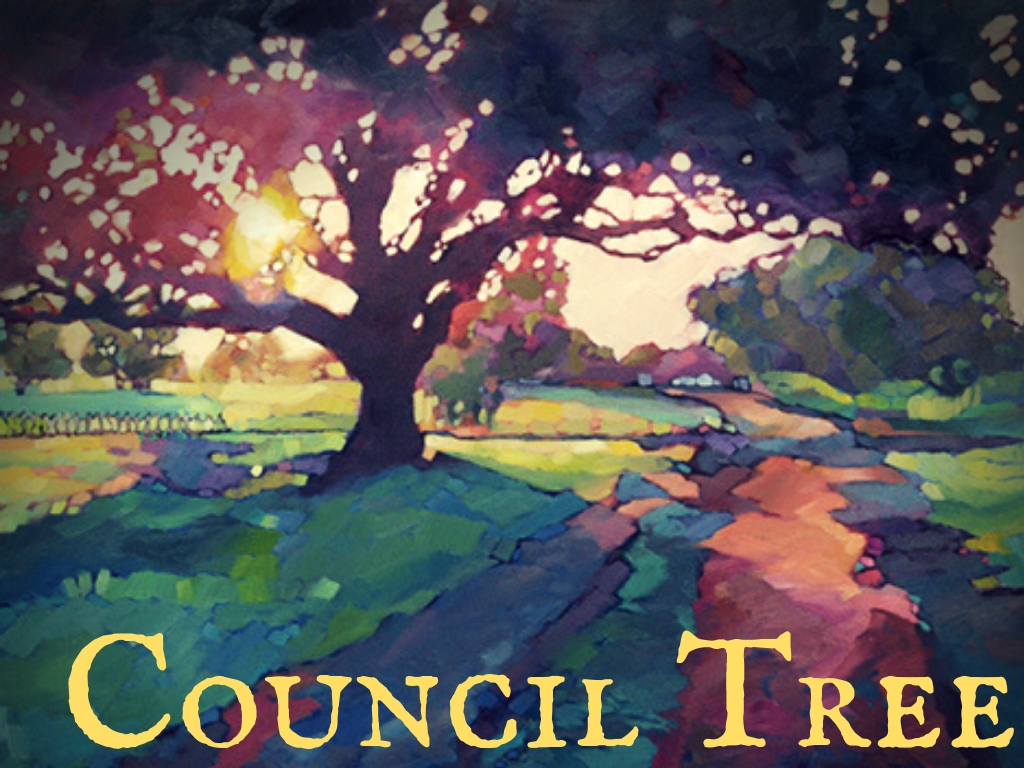 Council Tree – Mixed Culture Sour